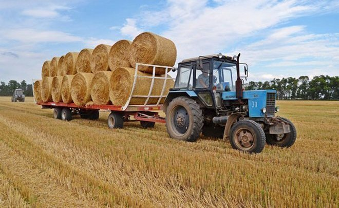 Tatarstan begins to export hay to Europe for the first time