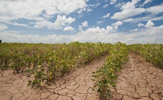 Enlarging farmland due to global warming can further spur climate change