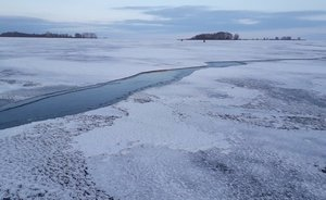 Scientists name causes of January flood and snowless winter in Russia