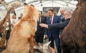 Wild animals of Tatarstan estimated at more than 1,6bn rubles